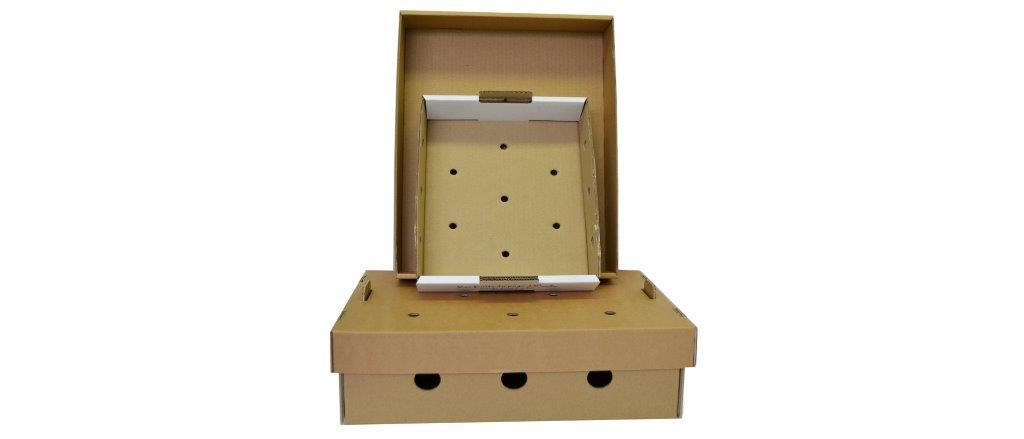 Caissettes carton sur mesure avec impression